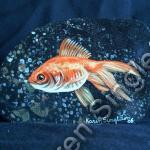 Gold Fish (SOLD)