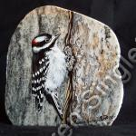 Woodpecker (SOLD)