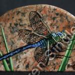 Dragon Fly  [SOLD]